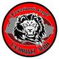 Галицкие Львы