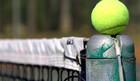 ATP и WTA. Неделя 5. Анонс